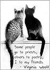 Friendship Cats-And-Quotes Stuff
