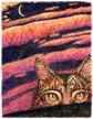 Lunar Cat Stuff