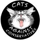 Cat Politics