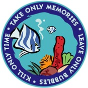 Take Only Memories (fish)