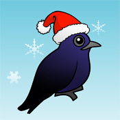 Purple Martin Christmas Cards, Ornaments & Gifts
