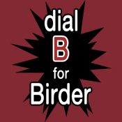 Dial B for Birder