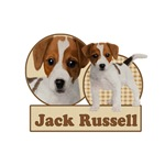 Jack Russell Duo