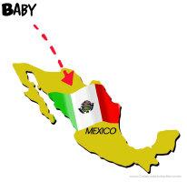 Mexico Adoption Shop
