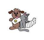 INJURED PETS