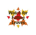 WATCH FOR FALLING L...
