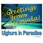 Uighurs in Paradise