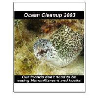 Ocean Cleanup 2003