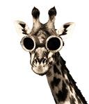 Giraffe With Steampunk Sunglasses Goggles