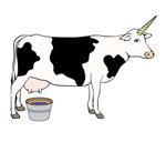 Magical Unicorn Dairy Milk Cow