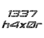 Leet Haxor 1337 Computer Hacker