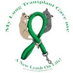 Lung Transplant: Cat