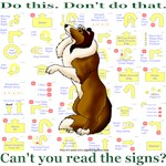 Can't You Read: Sheltie