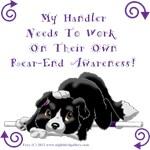 Handler Rear-End Awareness