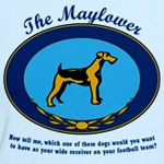 The Mayflower Dog Show