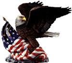 Eagle's America