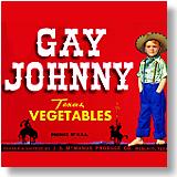 Gay Johnny