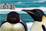 <b>Keep Cool</b>