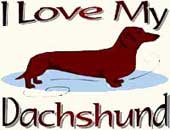 Dachshund clothes & gifts