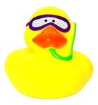 Y-Duck