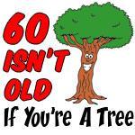60 Isn't Old Tree Drinkware
