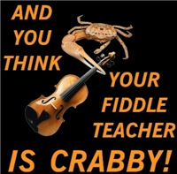 Crabby Fiddle Teacher