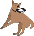 Frisbee Design