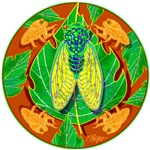 Cicada Mandala