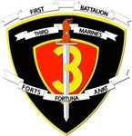 USMC - 1st Battalion - 3rd Marines