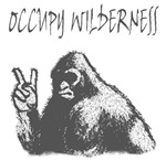 OCCUPY WILDERNESS