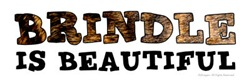 Brindle is Beautiful!