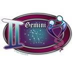 Gemini Shirts & Gifts