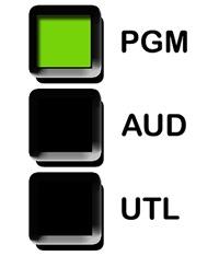 PGM AUD UTL