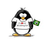 Washington Penguin