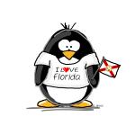 Florida Penguin