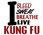 Bleed Sweat Breathe Kung Fu