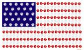 Paw Print Flag