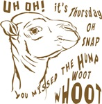 What Day is it HumpDay Camel