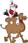 Santa on Hump Day Christmas Camel