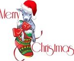 Merry Christmas Baby Pygmy