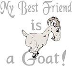 Best Friend Goat
