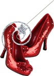 Ruby Red Slippers and Wand