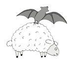 Fruit Bat and Sheep