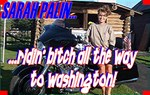 No Palin No Gain!