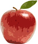 Apple Fruit Washington Fuji Red Food