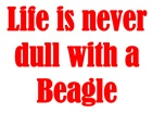Beagle Saying : Live is never dull with a Beagle