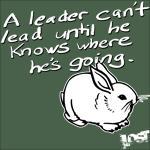 Leader Leads Rabbit Apparel