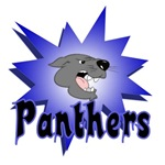 PANTHERS TEAM T-SHIRTS AND GIFTS