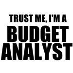 Trust Me, I'm A Budget Analyst