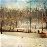 Winter Morning Pond